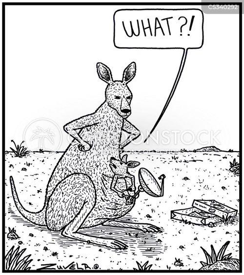 roos cartoon
