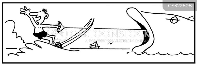 water skied cartoon