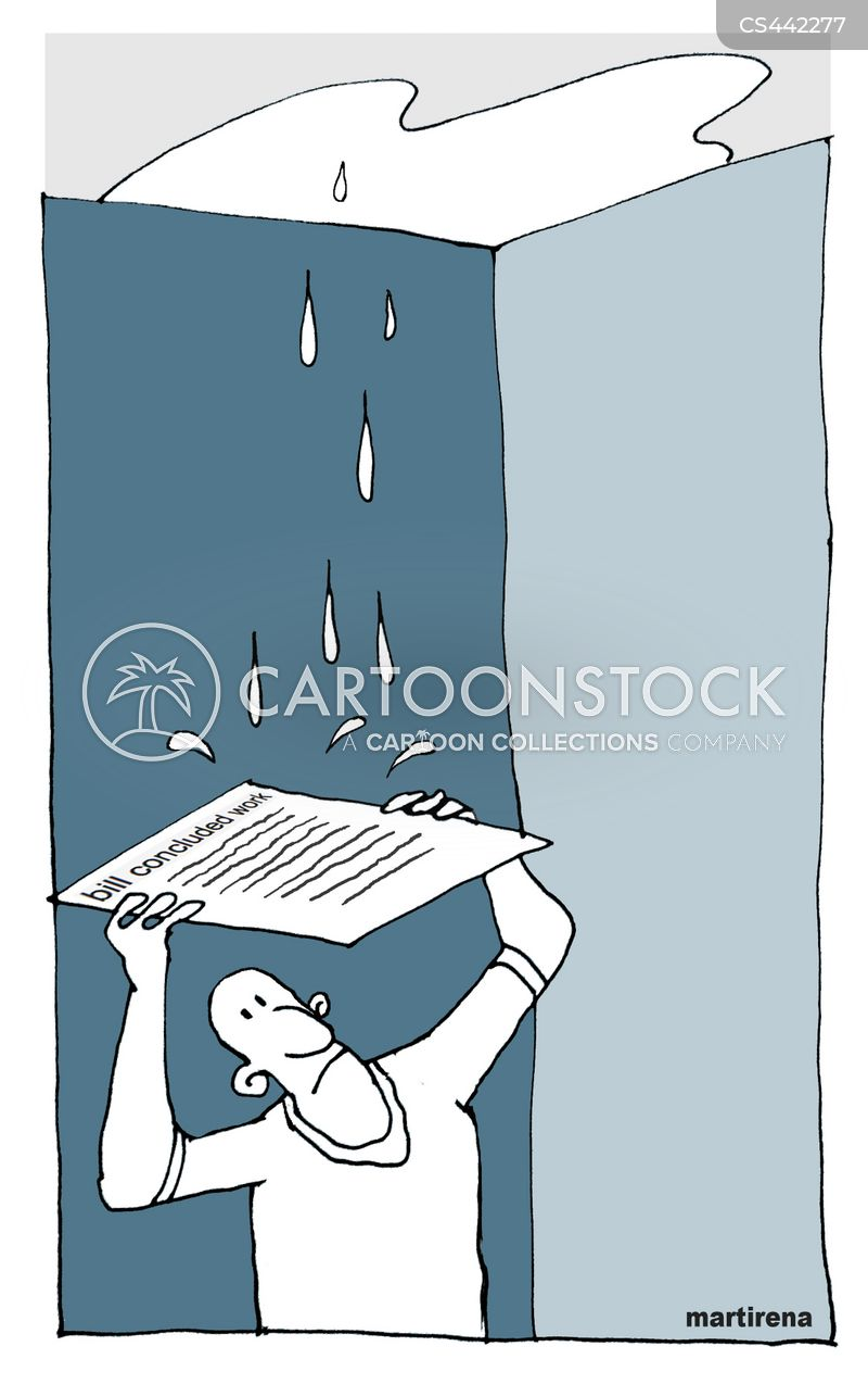 leaky roof cartoon