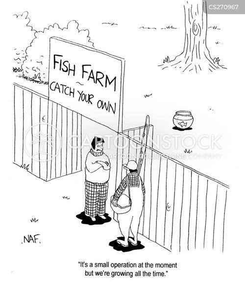fish farm cartoon