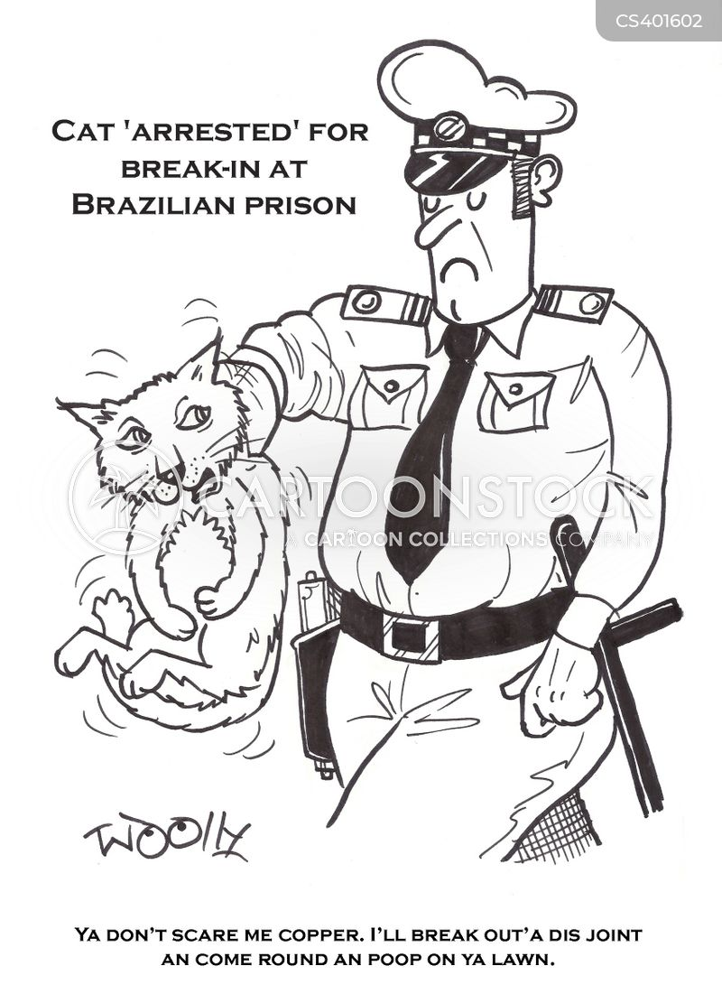 break ins cartoon