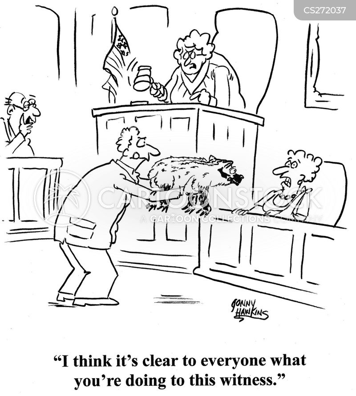 badgering witness cartoon