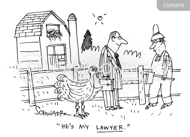 barn animal cartoons and comics funny pictures from cartoonstock