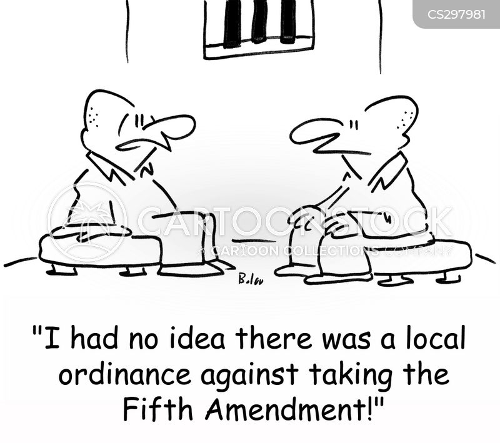 fifth amendment cartoon