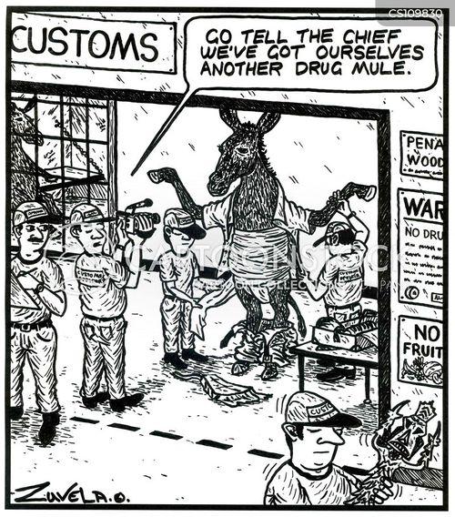 drug mule cartoon