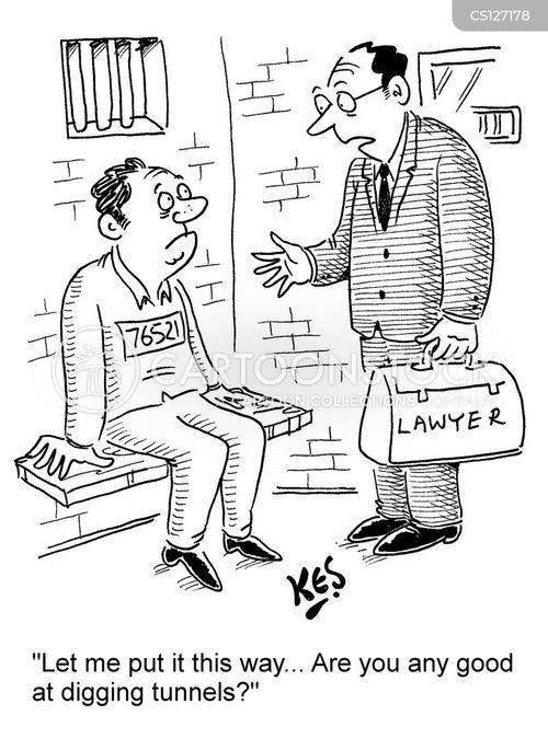 felonies cartoon