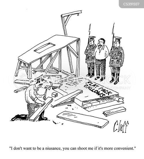 flat packed cartoon