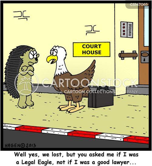 Solicitor Legal