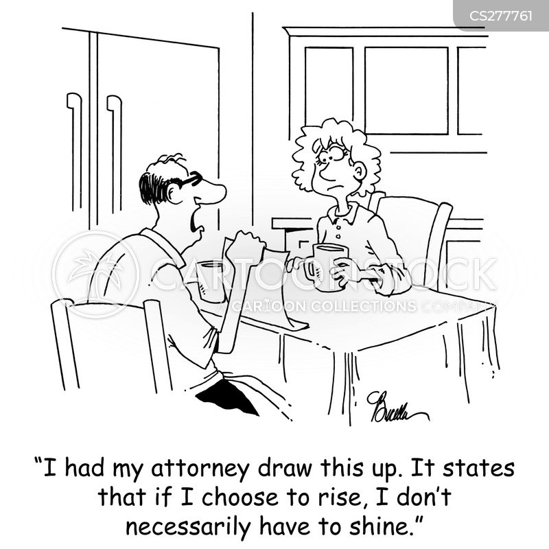 legal procedure cartoon