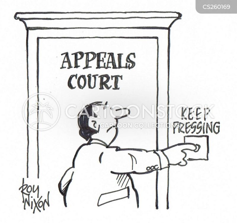 Court Appeal