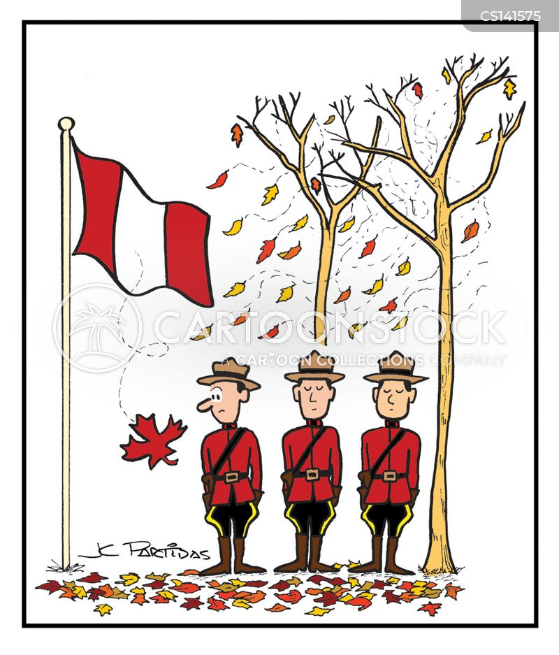 Maple Leafs Cartoons And Comics Funny Pictures From Cartoonstock