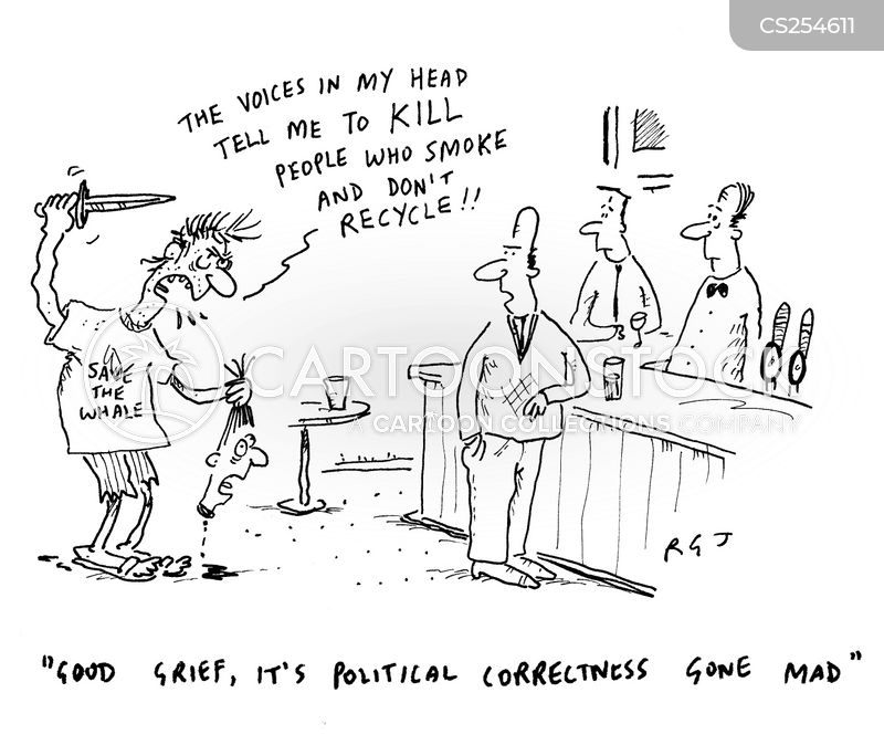 correctness cartoon
