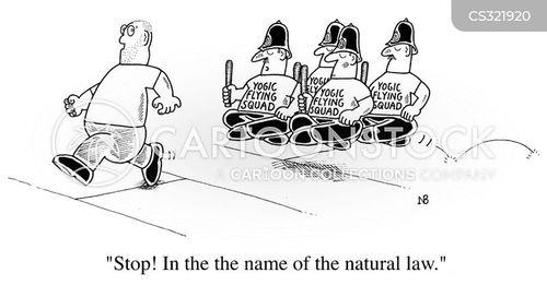 natural law cartoon