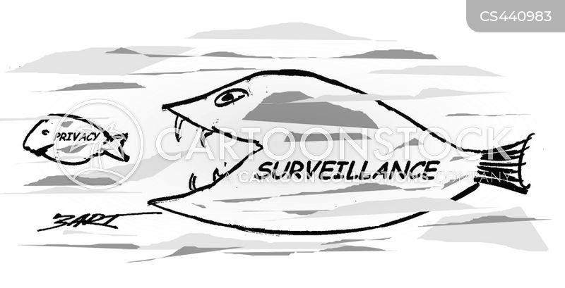 government surveillance cartoon