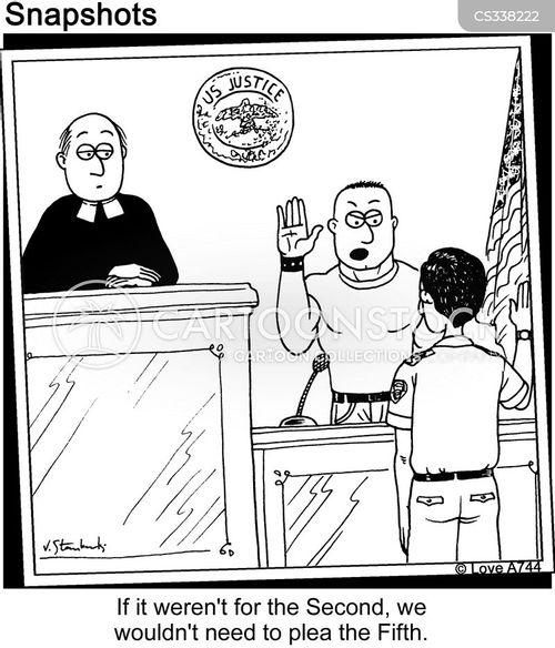 plead the fifth cartoon