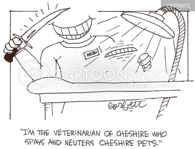 spayed cartoon