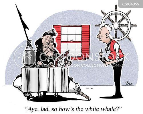 whale hunts cartoon
