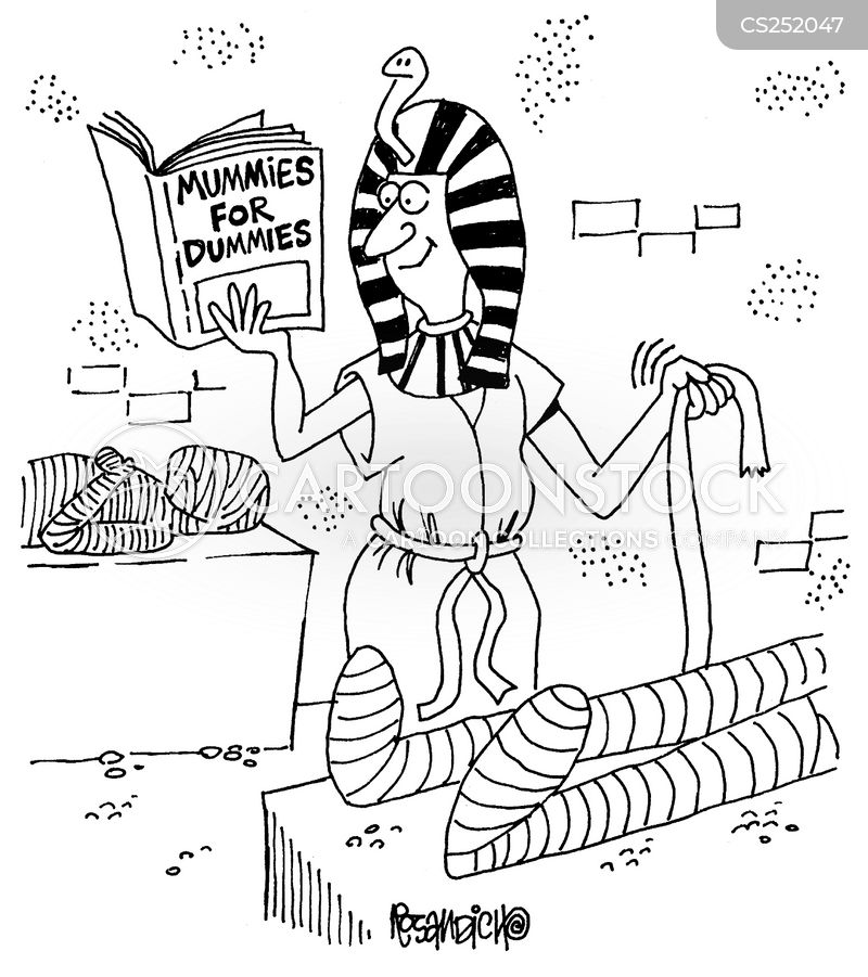 Funny Pictures About Egypt: Idiot's Guides Cartoons And Comics
