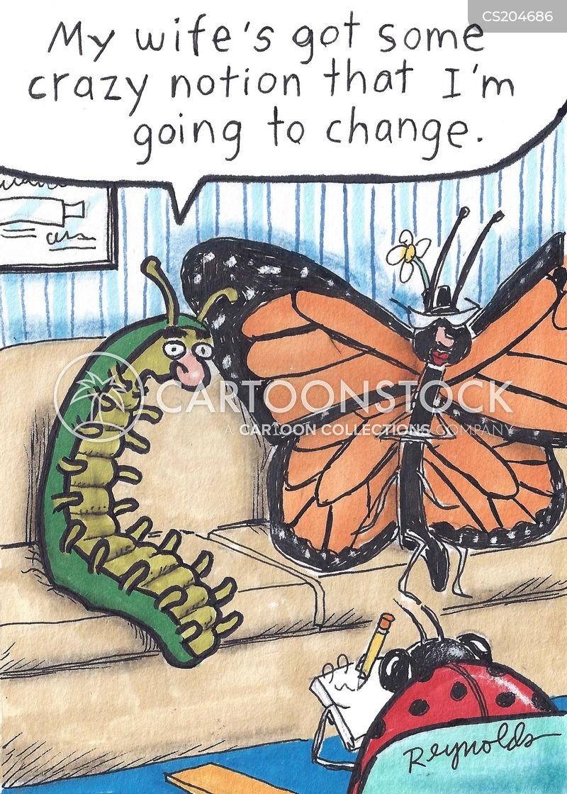 metamorphoses cartoon