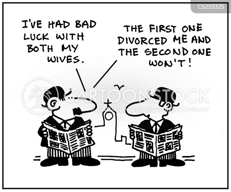 second wives cartoon
