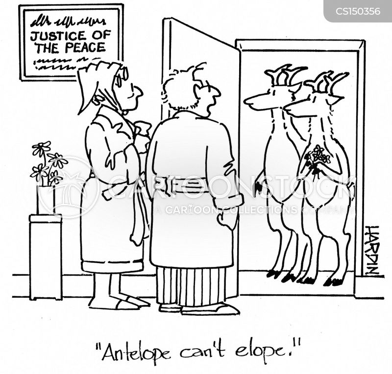 eloped cartoon