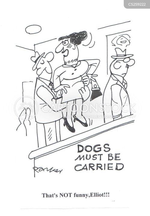 the subway cartoon