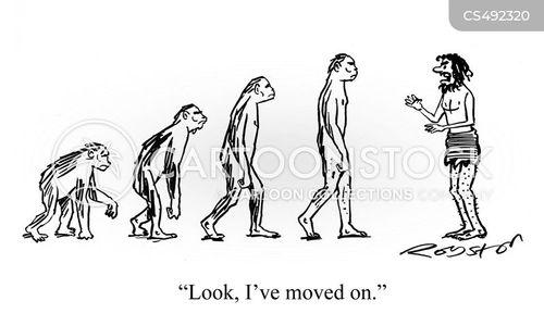 on the origin of species cartoon