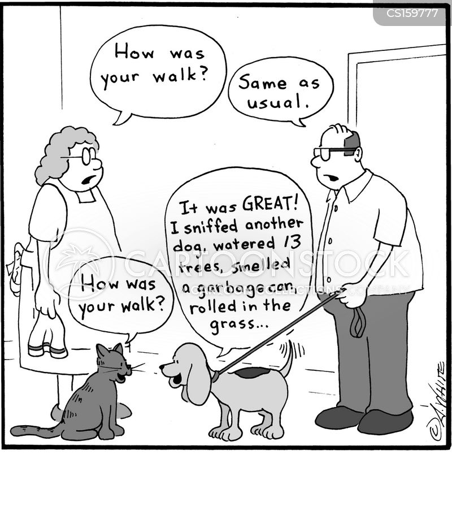 dichotomy cartoon