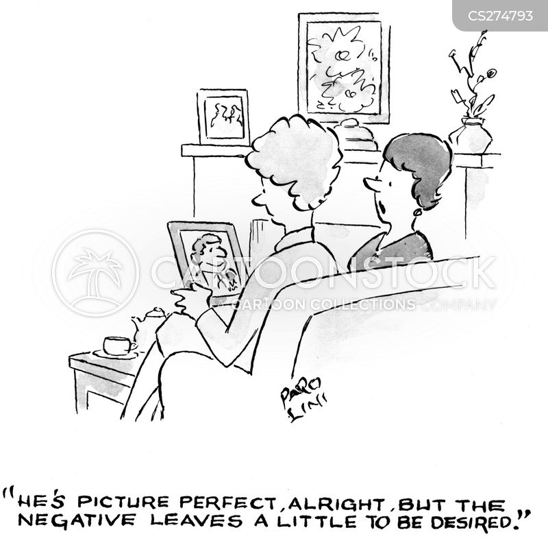 picture perfect cartoon