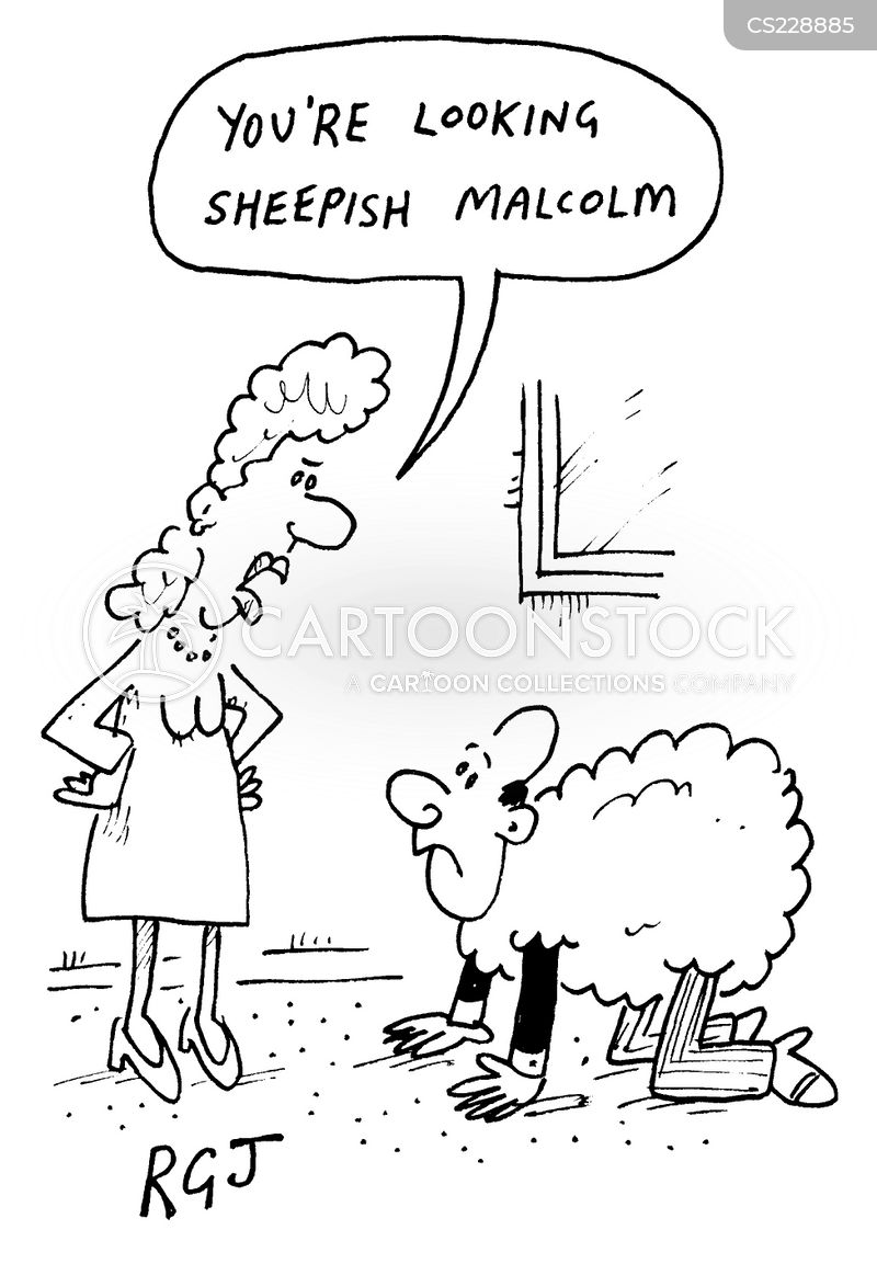sheepish cartoon