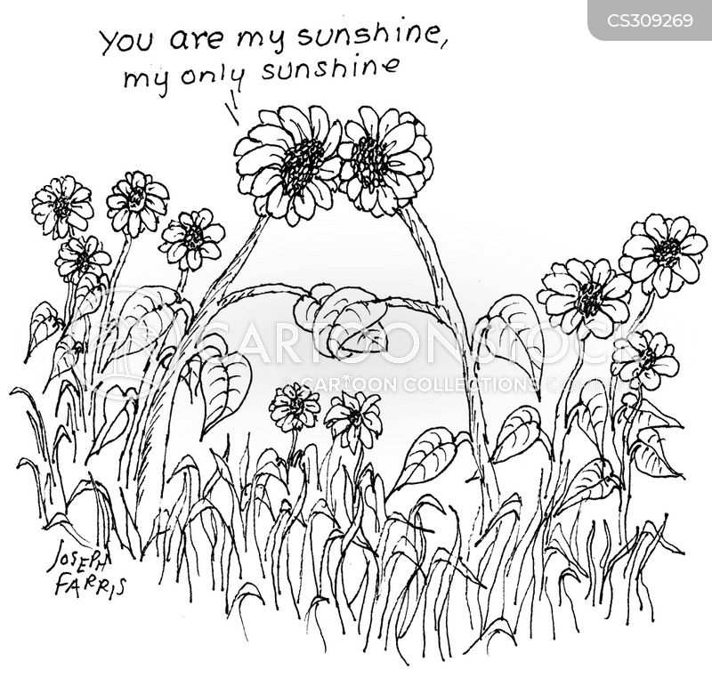 sunflowers cartoon