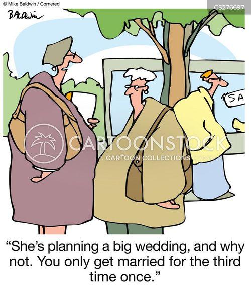 remarries cartoon