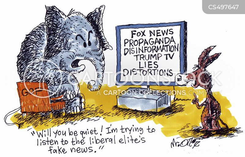 disinformation cartoon