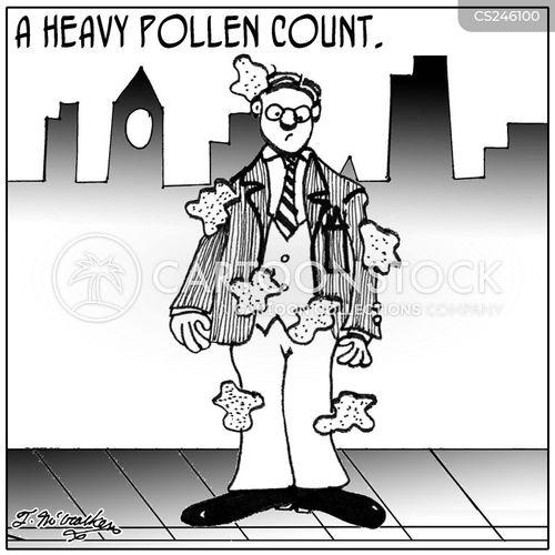 pollen counts cartoon