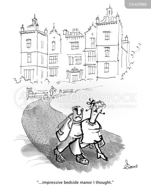 manors cartoon