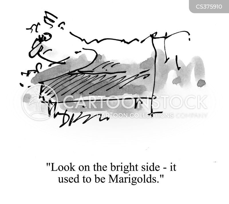 marigolds cartoon