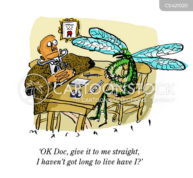 Dragonfly Cartoons And Comics Funny Pictures From Cartoonstock
