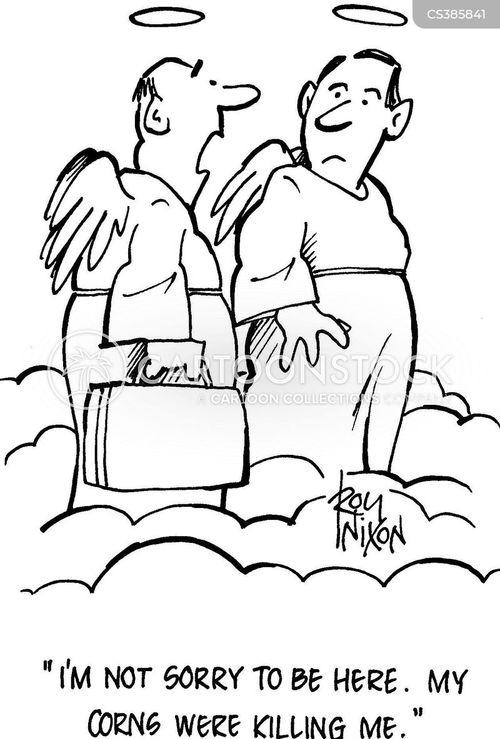 clavus cartoon