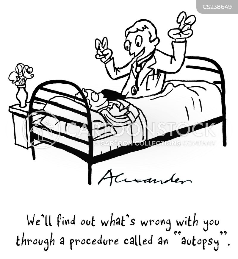 dissections cartoon