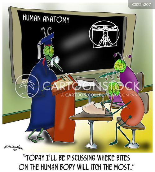 itchiness cartoon