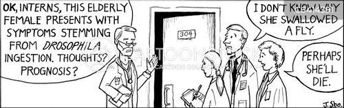 teaching hospital cartoon