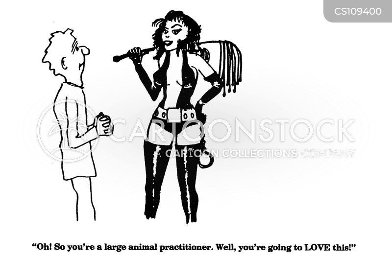 large animal practitioners cartoon