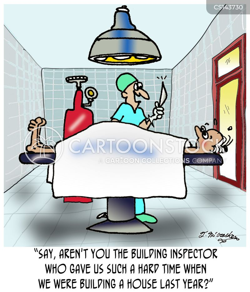 building regulation cartoon
