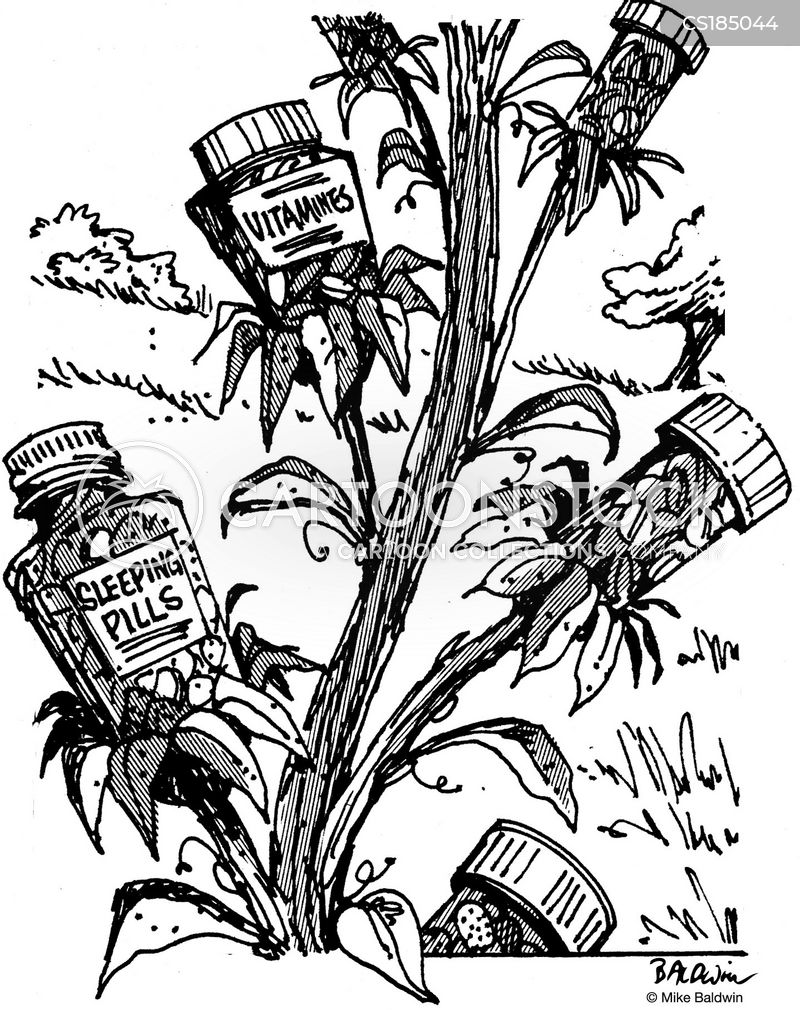 medicinal herbs cartoon