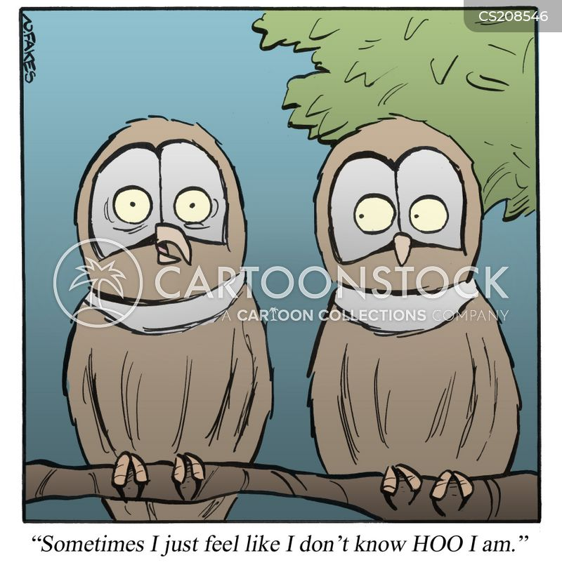 hoots cartoon