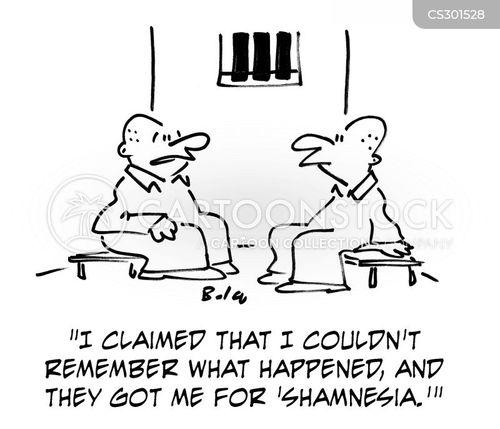 shams cartoon