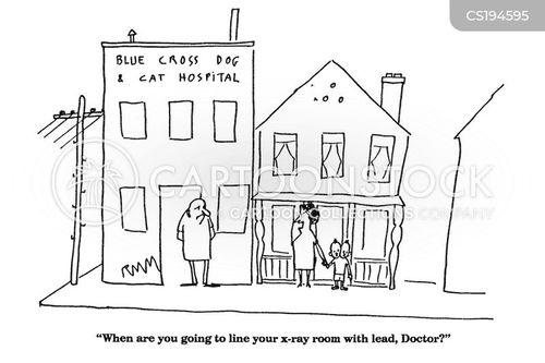 veterinary practise cartoon