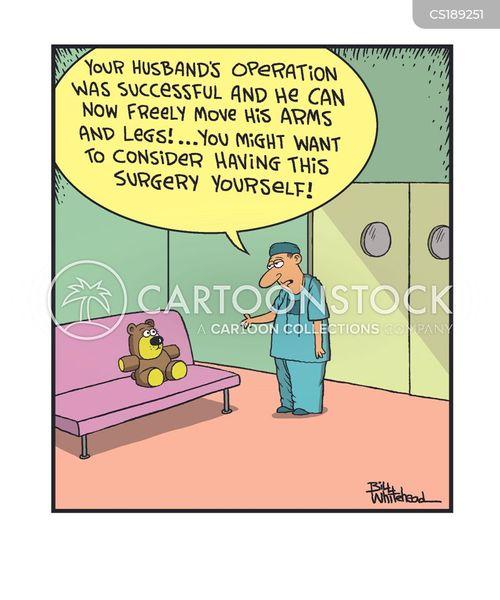teddies cartoon