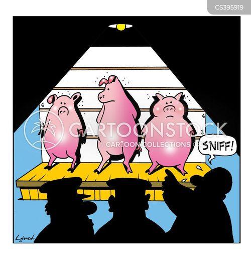 flu outbreaks cartoon
