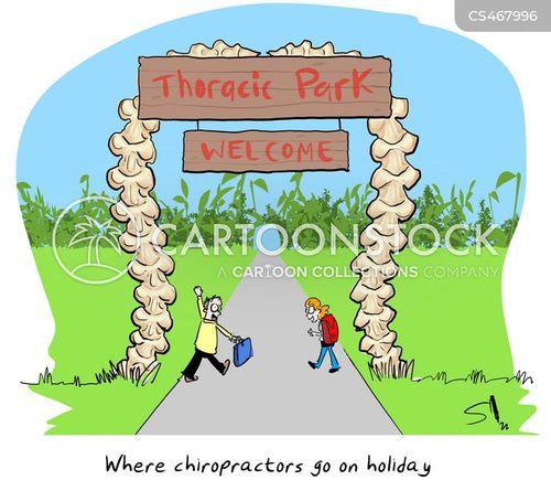 chiropractice cartoon